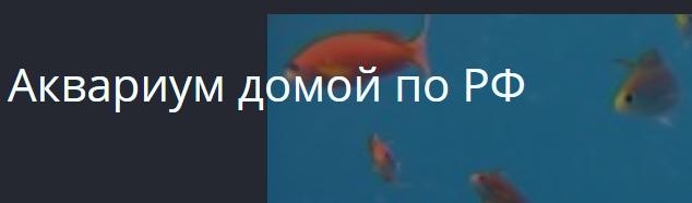 Компания аквариум- домой рф